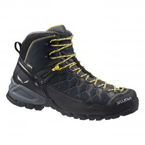Alp Trainer Mid GORE-TEX® Men's Shoes